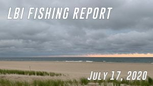LBI Fishing Report July 17 2020