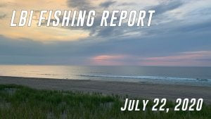 LBI Fishing Report July 22, 2020