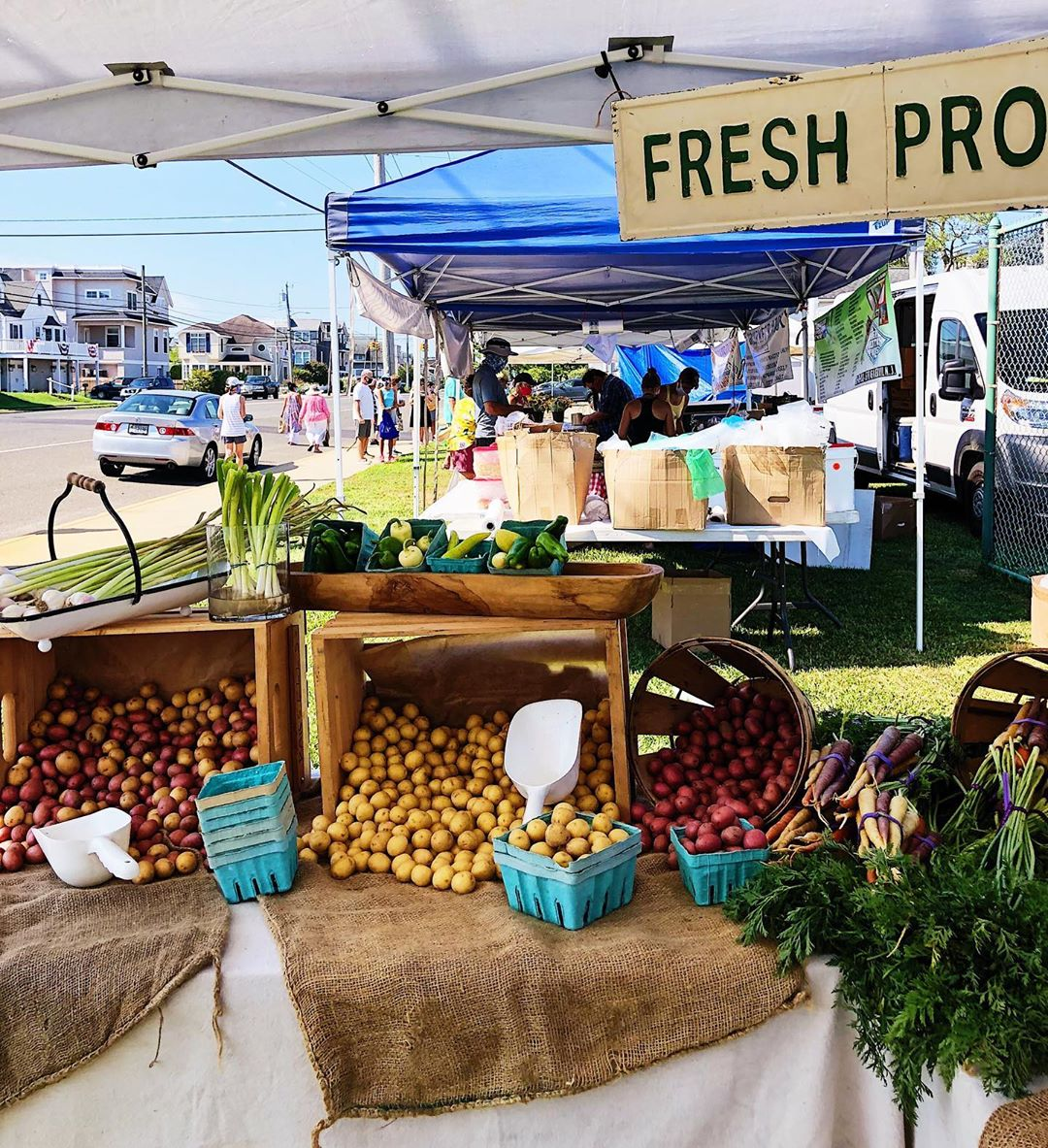 took a little trip over to the beach haven farmers market (every wednesday 9-12)…