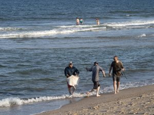 Fatter Sandbars Are Coming to Greet Us; Isaias Leads to Brownouts of Vegetation