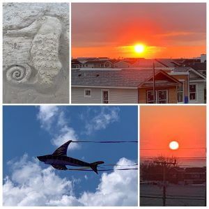 LBI A perfect day – saw the  and  with a gorgeous  inbetween – thank you my dear cou…