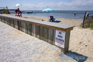 Good News This Year for Kiddie Beach in Barnegat Light