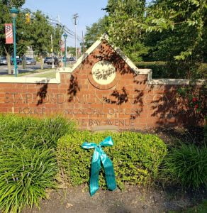 'Turn the Towns Teal' for Ovarian Cancer Awareness