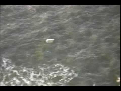 Boat sinks near Long Beach Island