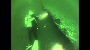 Chaparra Wreck Barnegat Light part 1 #LBI