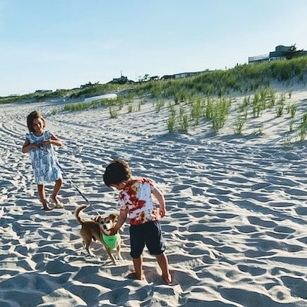Delia & Micah & Roo playing on the beach….LBI 2020    #lbi #longbeachisland #n…