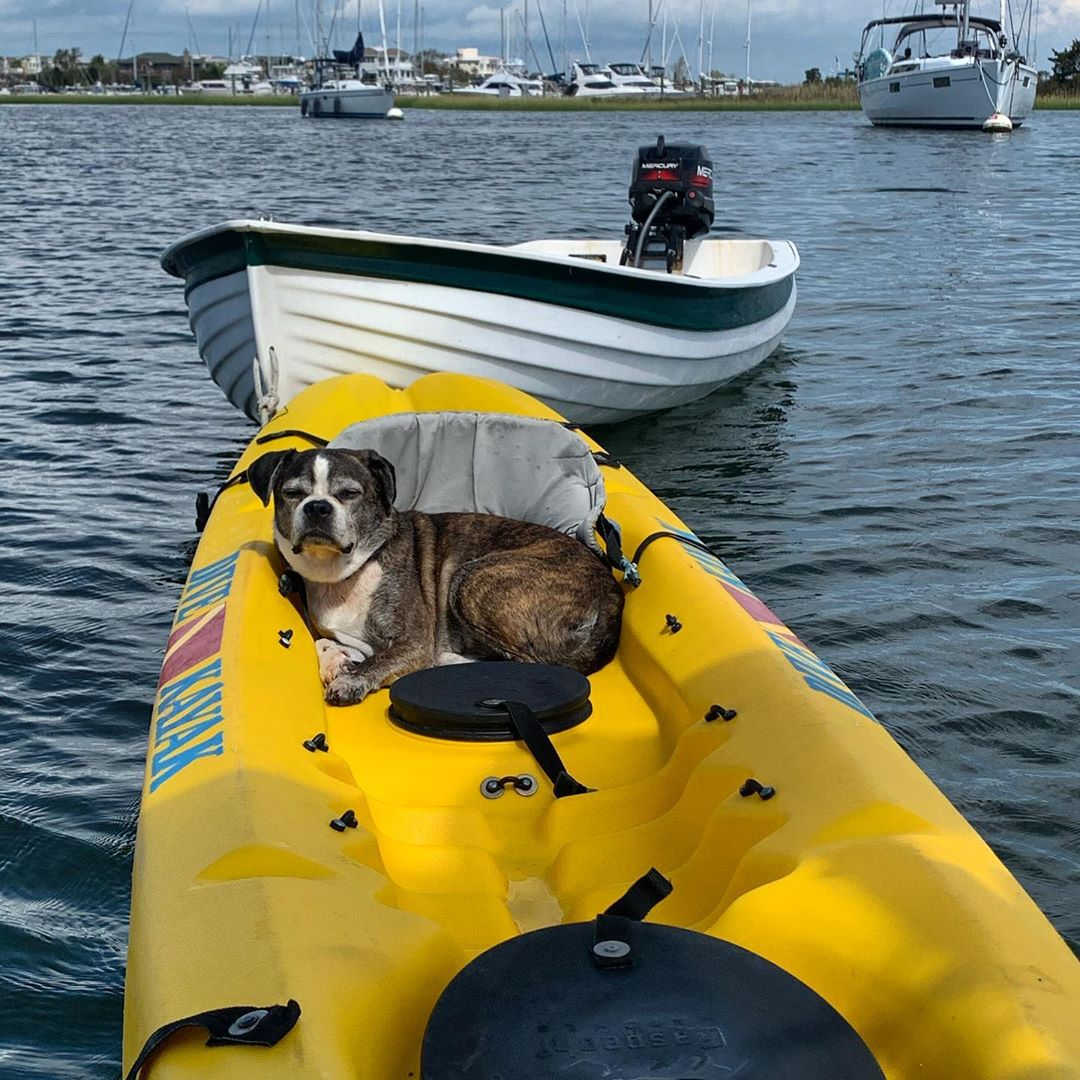 """LBI """"Hey lady, lets get going, this kayak won't paddle itself!""""             …"""