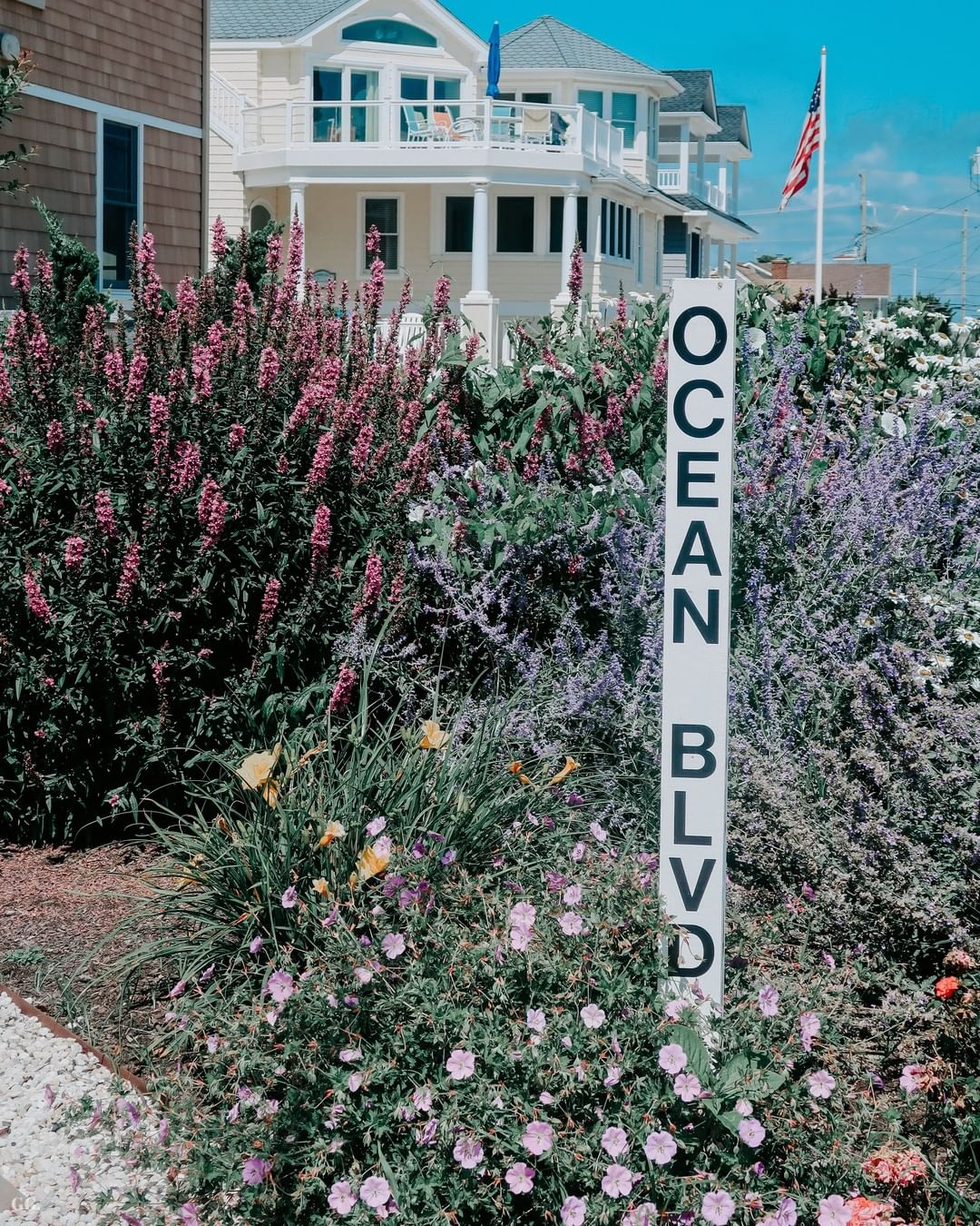 LBI A beautiful garden stands on Ocean Blvd. Flowers bloom because of our collective…