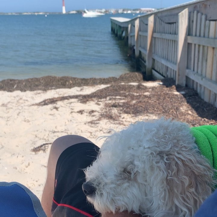 LBI Dozing off  listening to the waves   .                  …