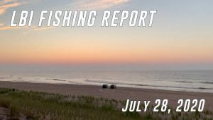 LBI Fishing Report July 28, 2020