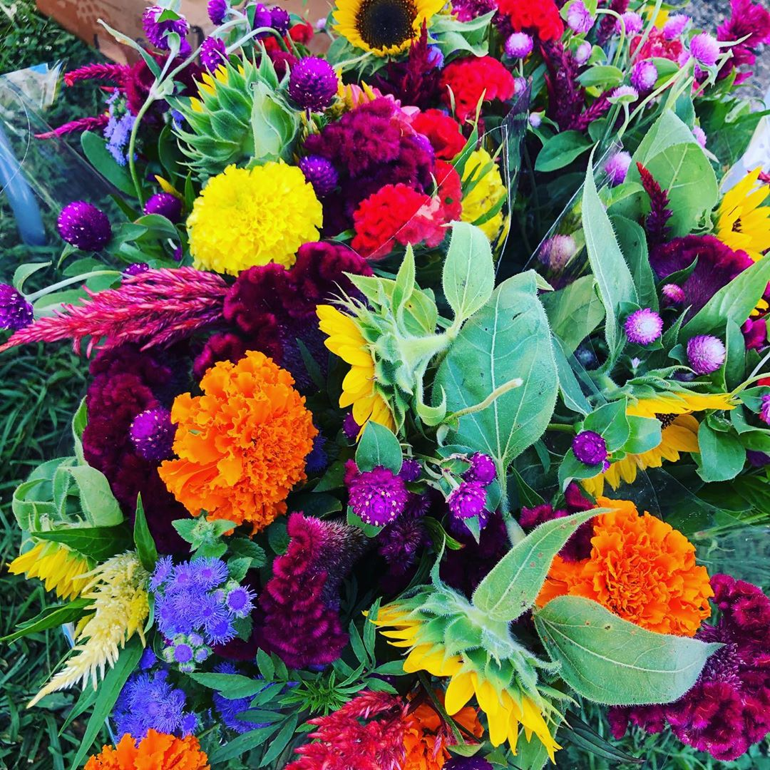 LBI Flowers can't solve problems, but they're a great start.         …