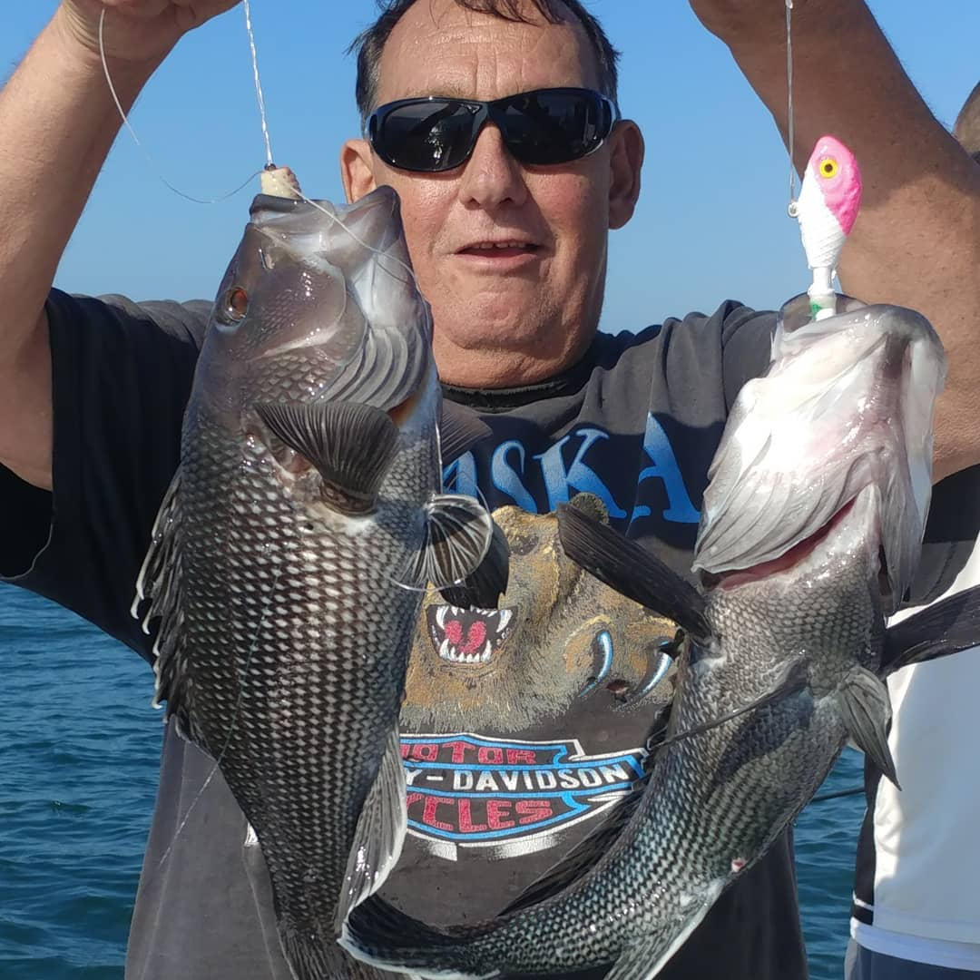 "LBI Jersey Joey with some monster seabass… ""My top bait tail,was bit off, I matche…"