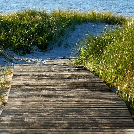 LBI PathwayTo Peace and Tranquility  Long Beach Island, NJ,                   …