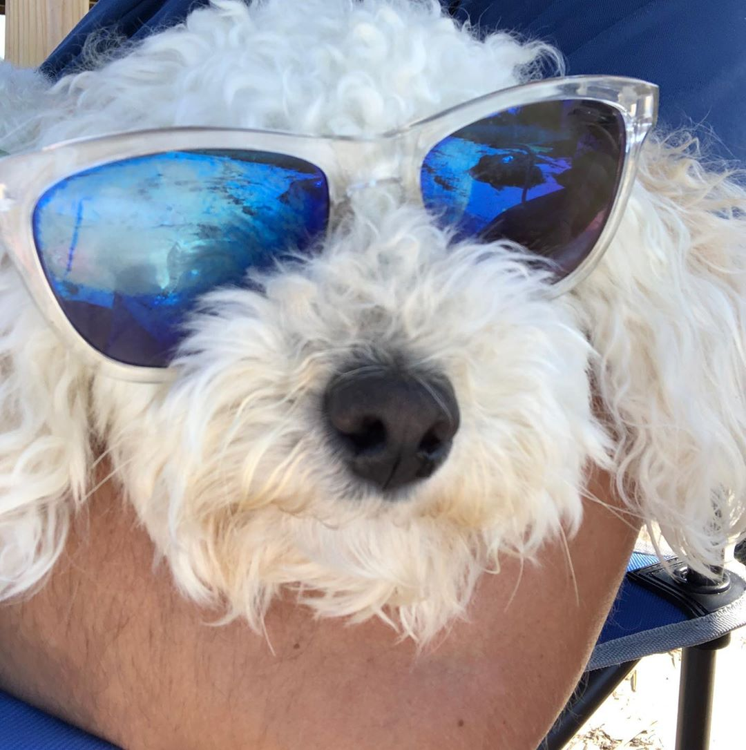 LBI Sun  out Shades on.  .              …