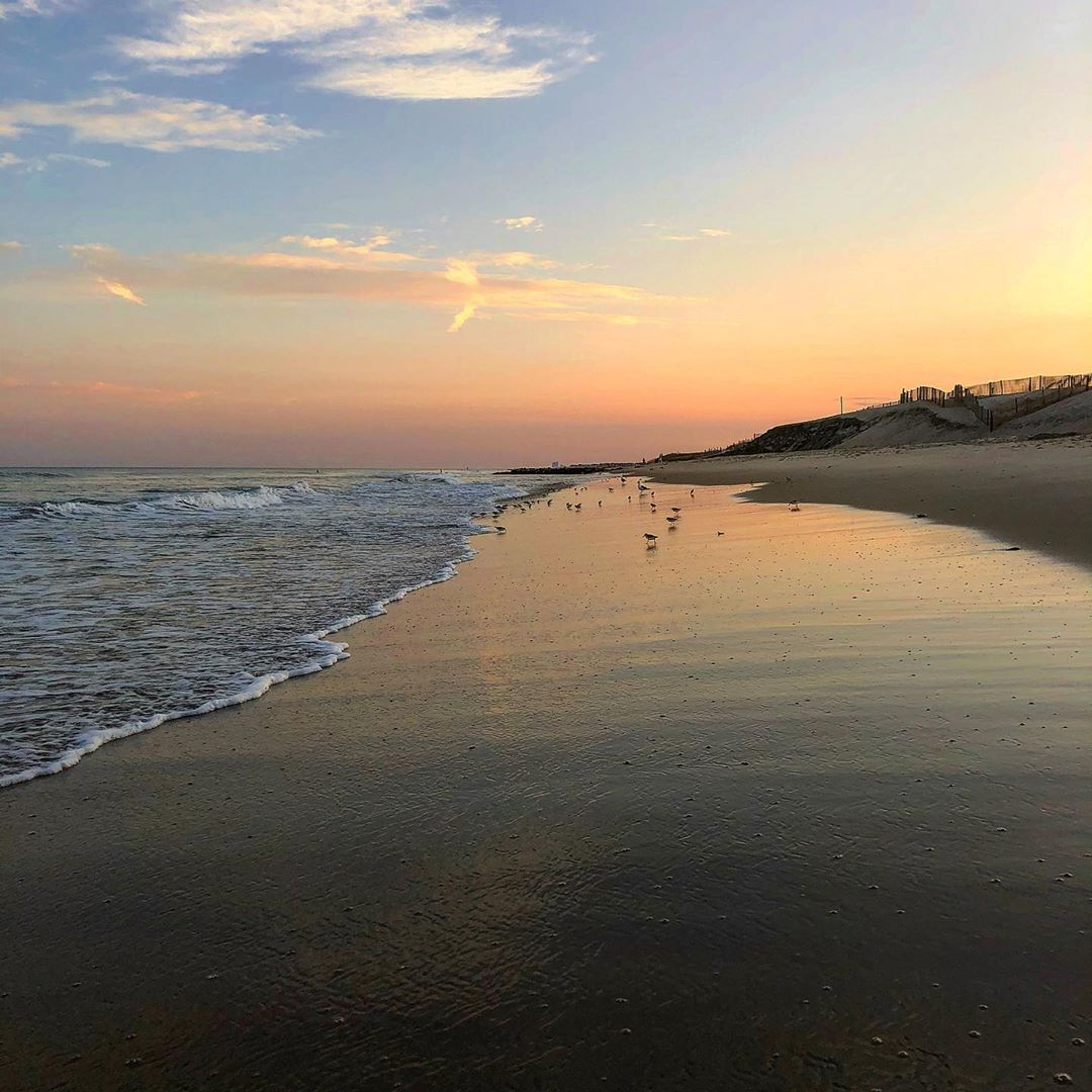 LBI Sunset in Beach Haven with baby seagulls dancing near the water                 …