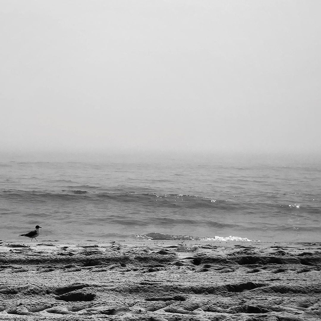 LBI foggy day at the beach…. . .   …
