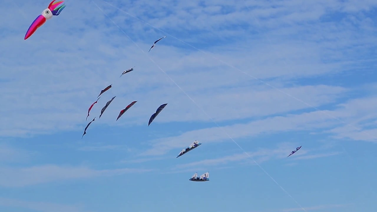 Read more about the article Long Beach Island NJ Kite Festival 2019
