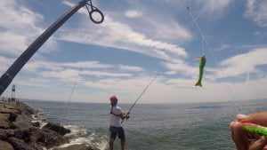 Shore Fishing for Fluke Using Gulp! Products (Barnegat Light, NJ) #LBI