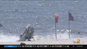 Some Long Island Beaches Closed Over Shark Sightings