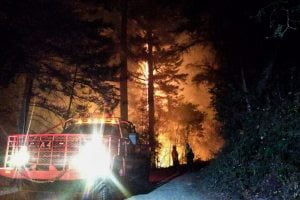 NJ Forest Fire Service Busier This Year With Western Wildfires