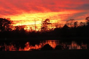 Read more about the article Tuckerton Creek Boat Rides Take on Halloween Spin