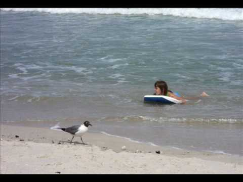 Read more about the article Beach Haven, NJ 2010 #LBI