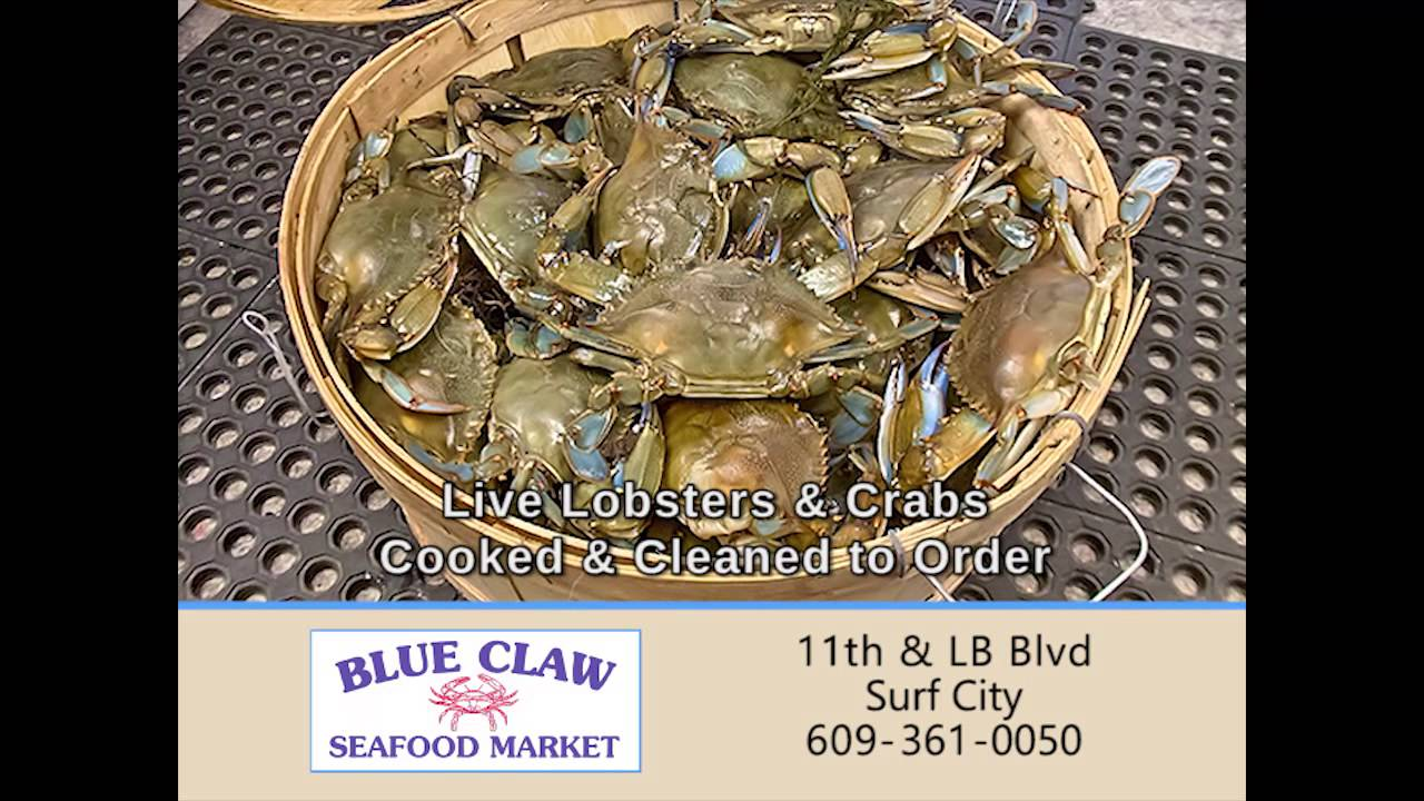 Read more about the article Blue Claw Seafood Market, Surf City NJ | LBI TV #LBI