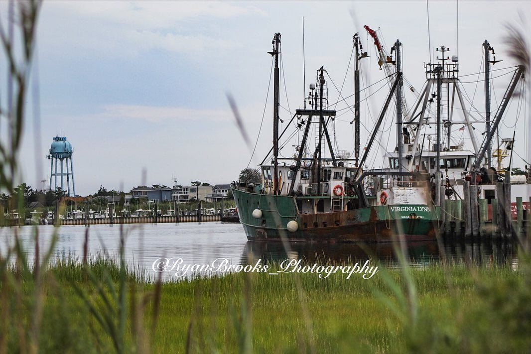 LBI Back to photography.            …