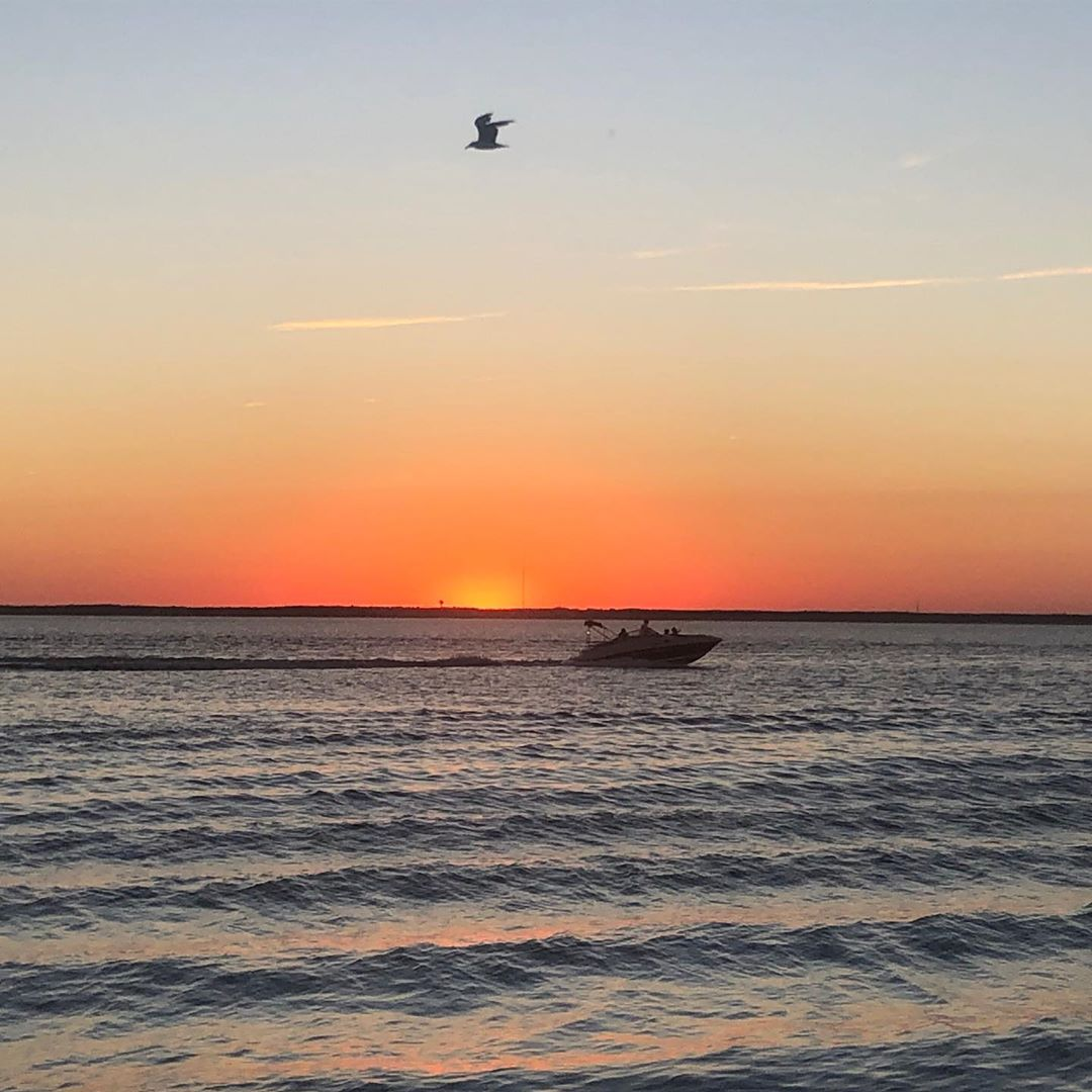 LBI Boat,bird,burst(of sun)- what else is there?   Photo creds:                     …