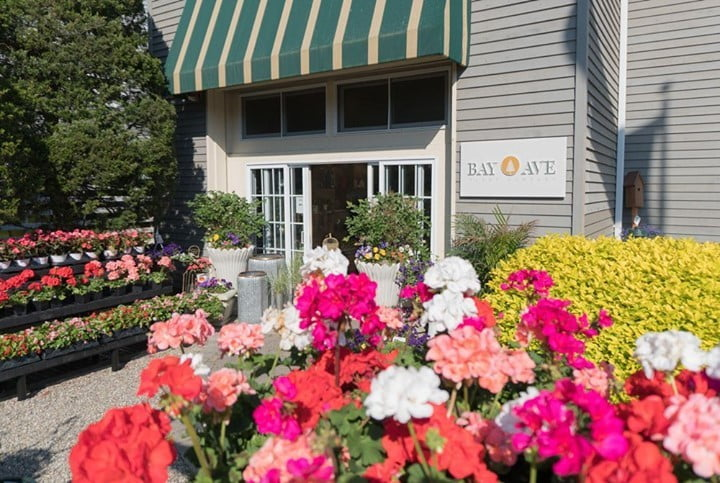 LBI Business Feature!  offers premier outdoor design and landscaping services all ac…