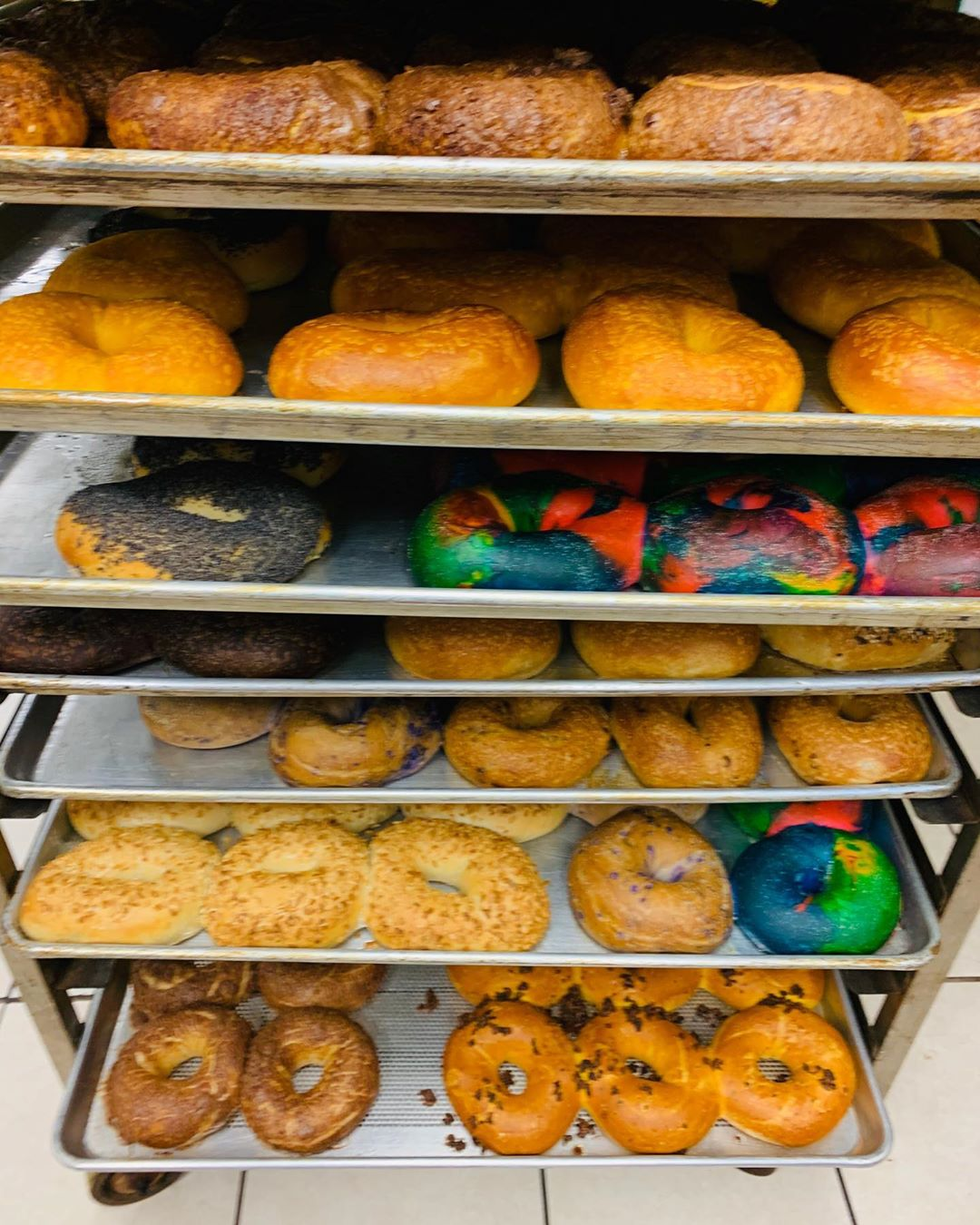 LBI Fresh Bagels Just Made including a couple NEW additions to the line-up ~ Apple C…