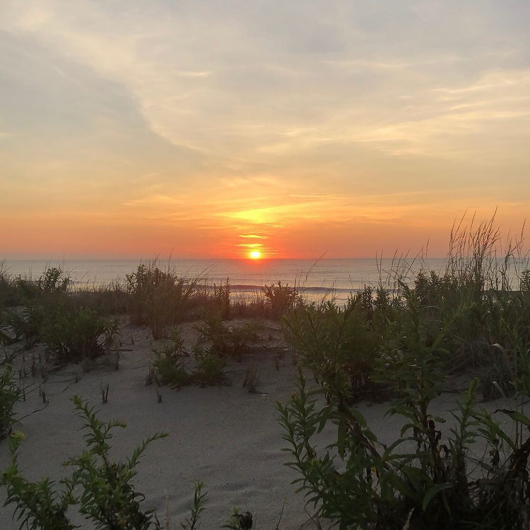 LBI Good morning               …