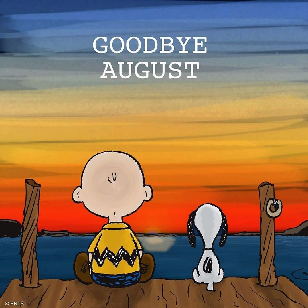 Read more about the article LBI Goodbye August!  ~~~~~~~~~~~~~~        …