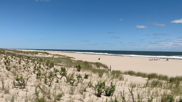 LBI It's the most wonderful time of the year  Local summer in full effect. Super sun…