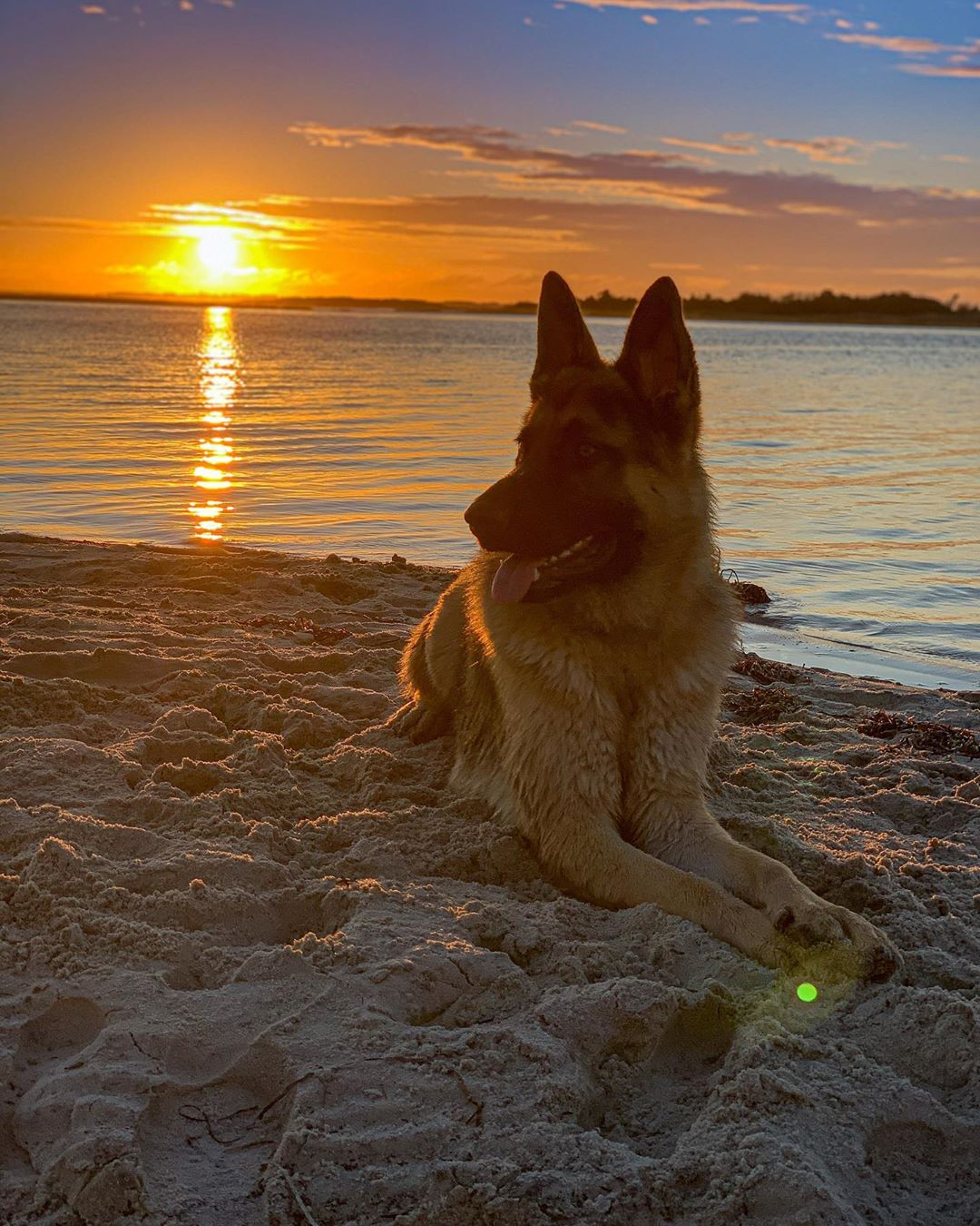 LBI Look, Axel. Everything the light touches is our kingdom.                        …