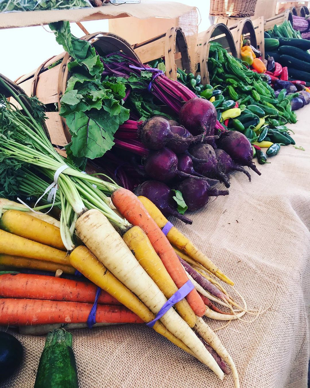 LBI NO WORDS NECESSARY at the Surf City Farmers Market 9am-Noon on Monday's through …