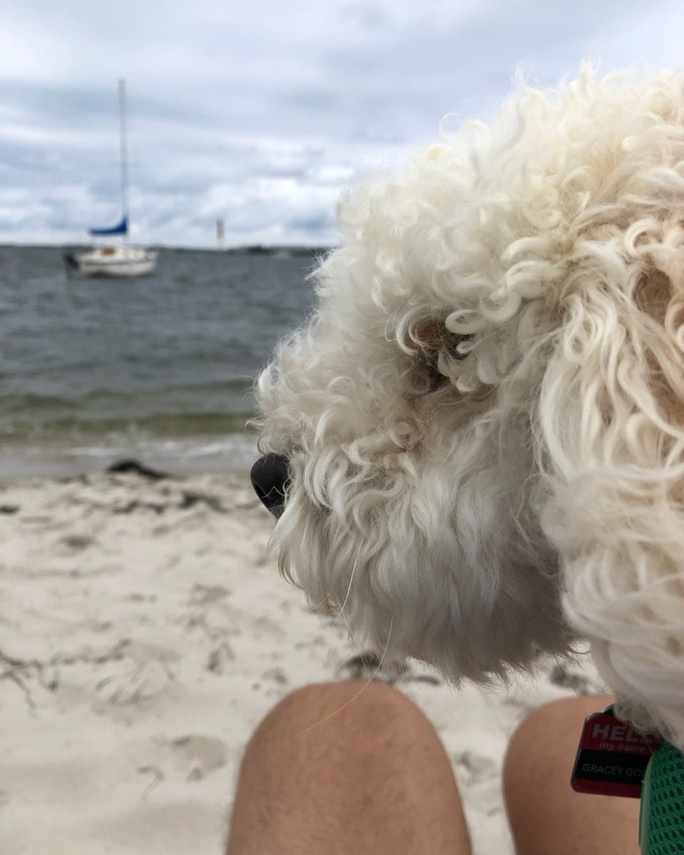 LBI Relaxing  watching boats, lighthouse  and the clouds   .       …
