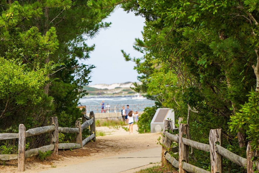 LBI This pathway at the Barnegat Lighthouse State Park has some Secret Garden vibes …