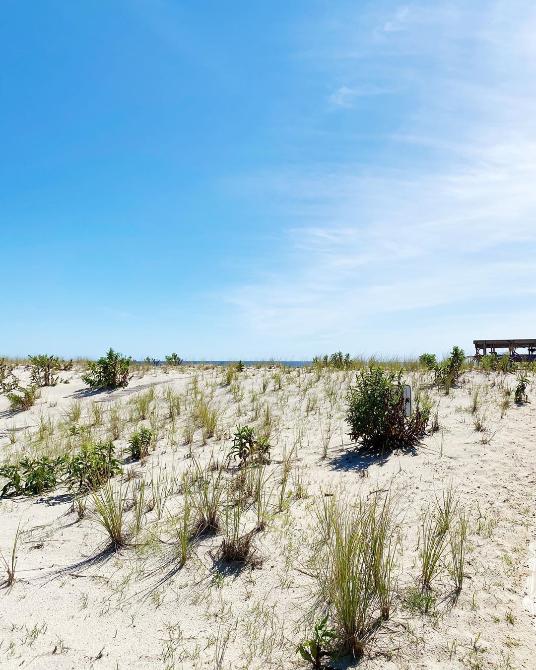 LBI Weekend weather forecast: Local summer, with a chance of  and late afternoon sca…