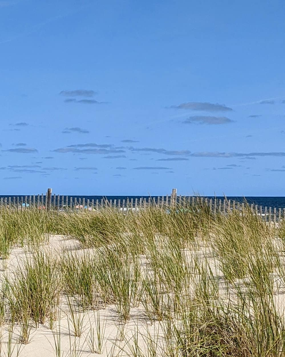 LBI  and  ( _                …