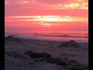 Read more about the article Sunrise @ Beach Haven NJ #LBI