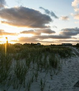 LBI We are *mostly* signing off for the season! We will periodically post some fun o…