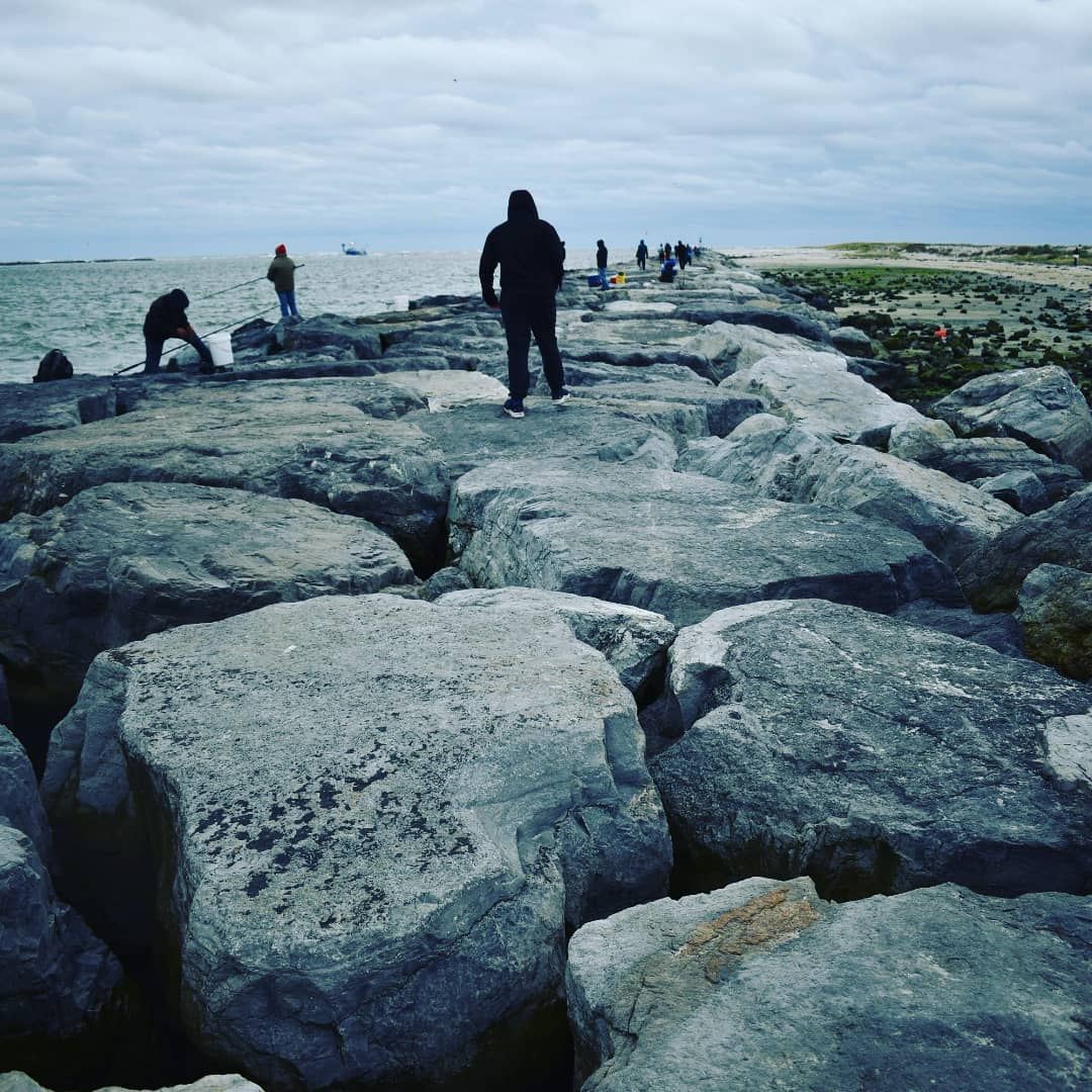 Read more about the article LBI A lot of folks fishing off the rocks today as we walked. Started to drizzle so u…