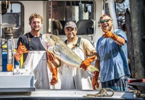 Read more about the article LBI As we go into our last weekend, we want to give a shoutout to the fishermen and …