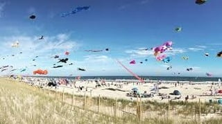 LBI Come for the fresh seafood, stay for the kites..⁠ Or whichever works for you.⁠  …