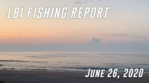 LBI Fishing Report June 26, 2020 #LBI