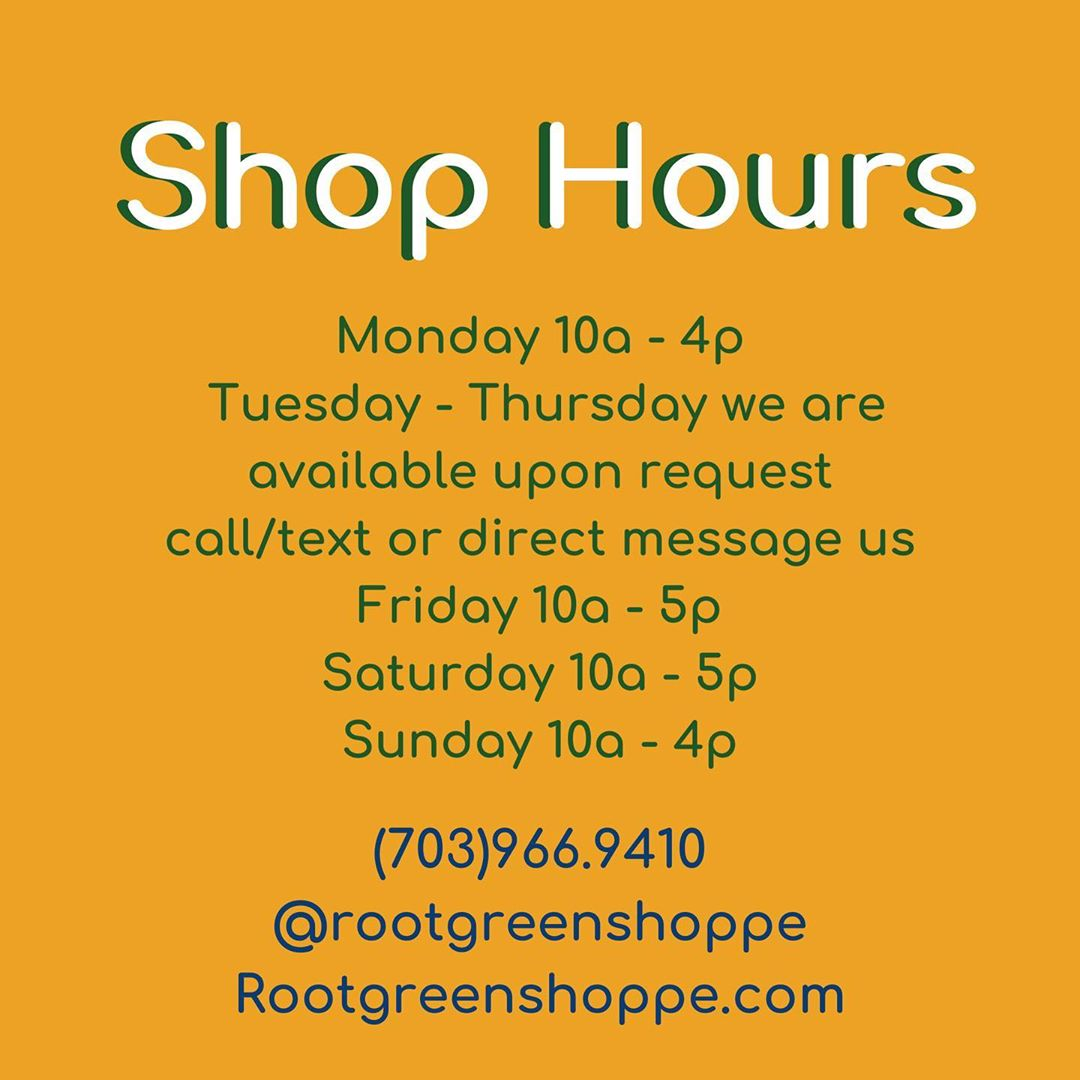 LBI New Shoppe hours for Autumn, which means year round refills and house plants!  O…