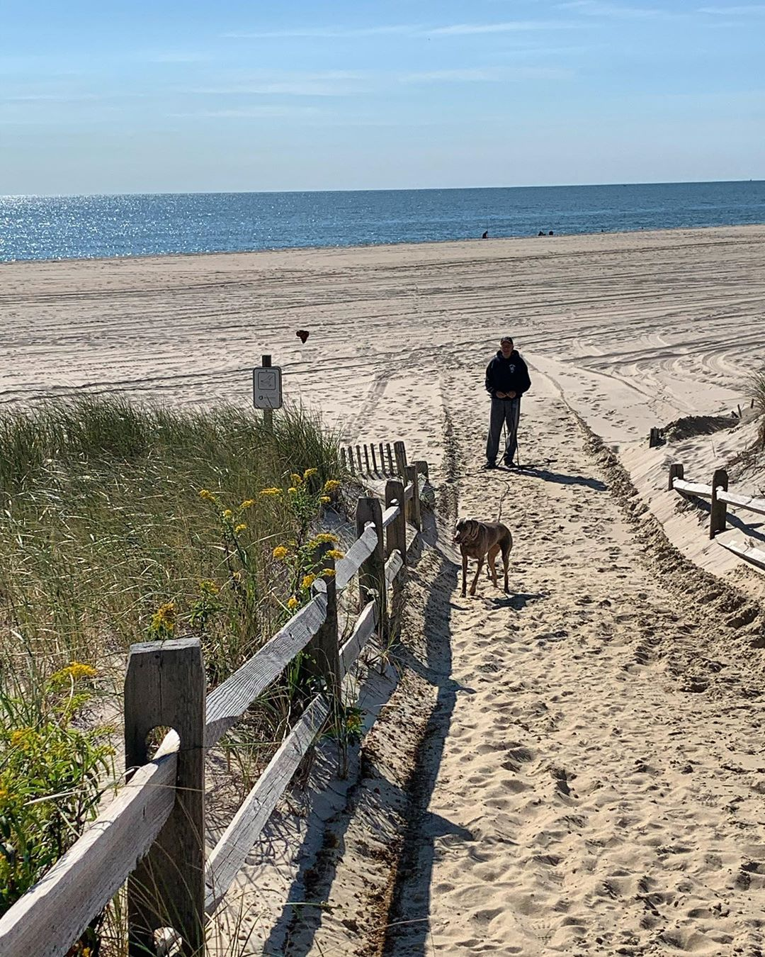 LBI Ready for the weekend! The kites will be flying Beach more, worry less          …