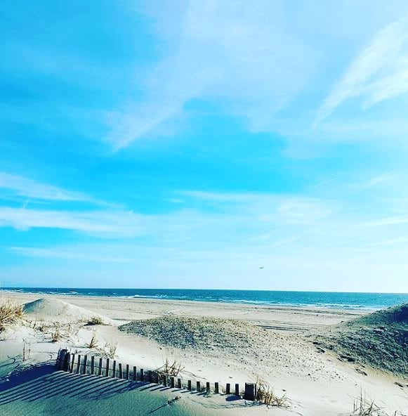 LBI Rest assured your shore home is in good hands w Jersey Shore Home Check.  With o…
