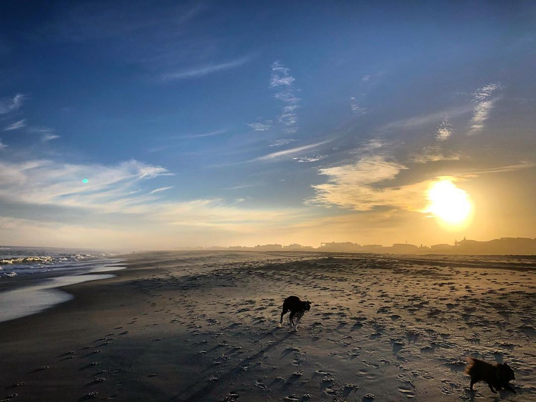LBI Running like the wind   with        …